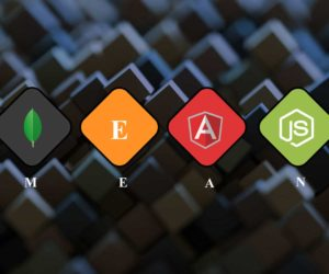 Get the Best Support from MEAN Stack Development Company in India